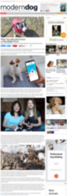 Full Article Modern Dog.jpg