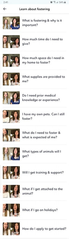 Learning about fostering.jpg