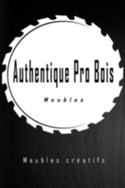 Logo blanc sur fond noir 24 X 36.jpg