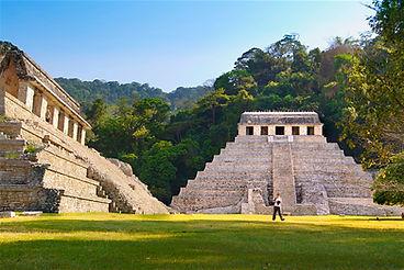 palenque_site.jpg