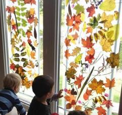 Recouvrir-les-vitres-d-un-rideau-de-feui