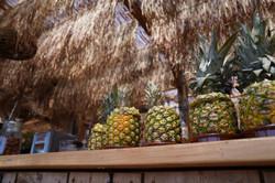 Beach-Club-bar-Ananas_©SylvainCaillot