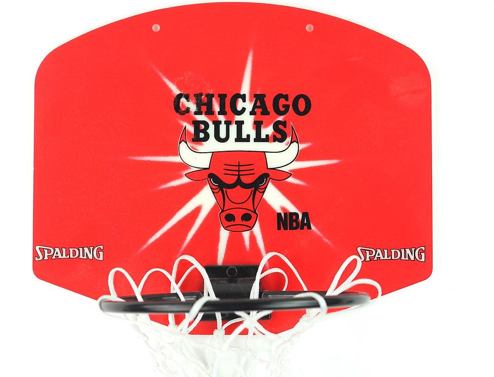 Mini Chicago Bulls Net