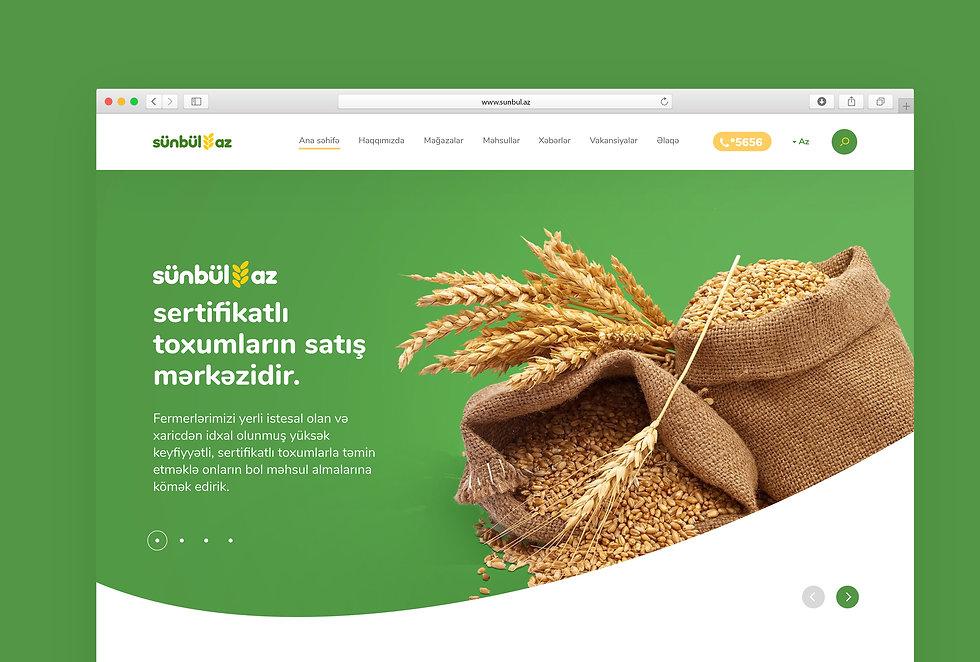 Sunbul_Website-overview_01.jpg