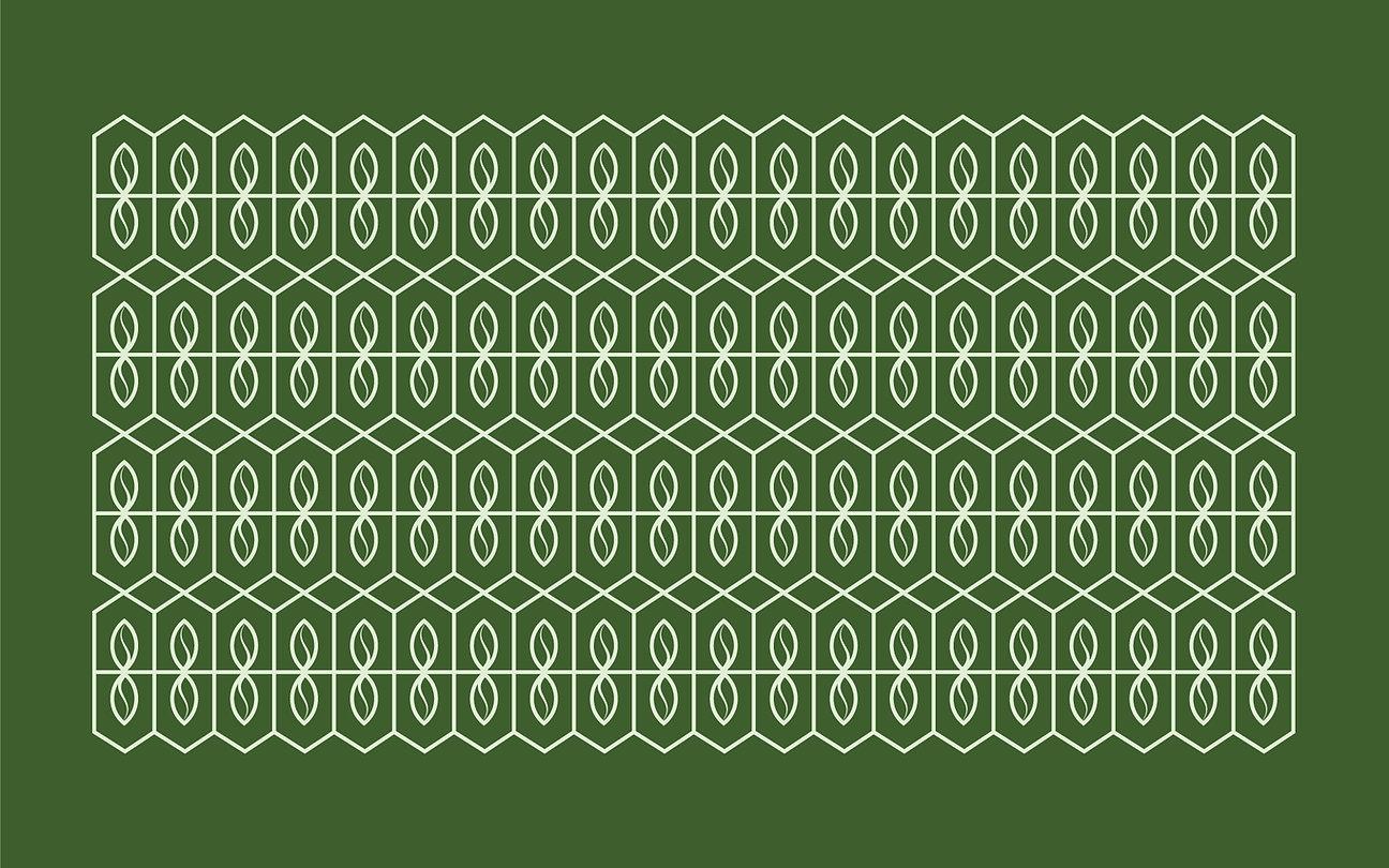 Chaykoff_Patterns.jpg