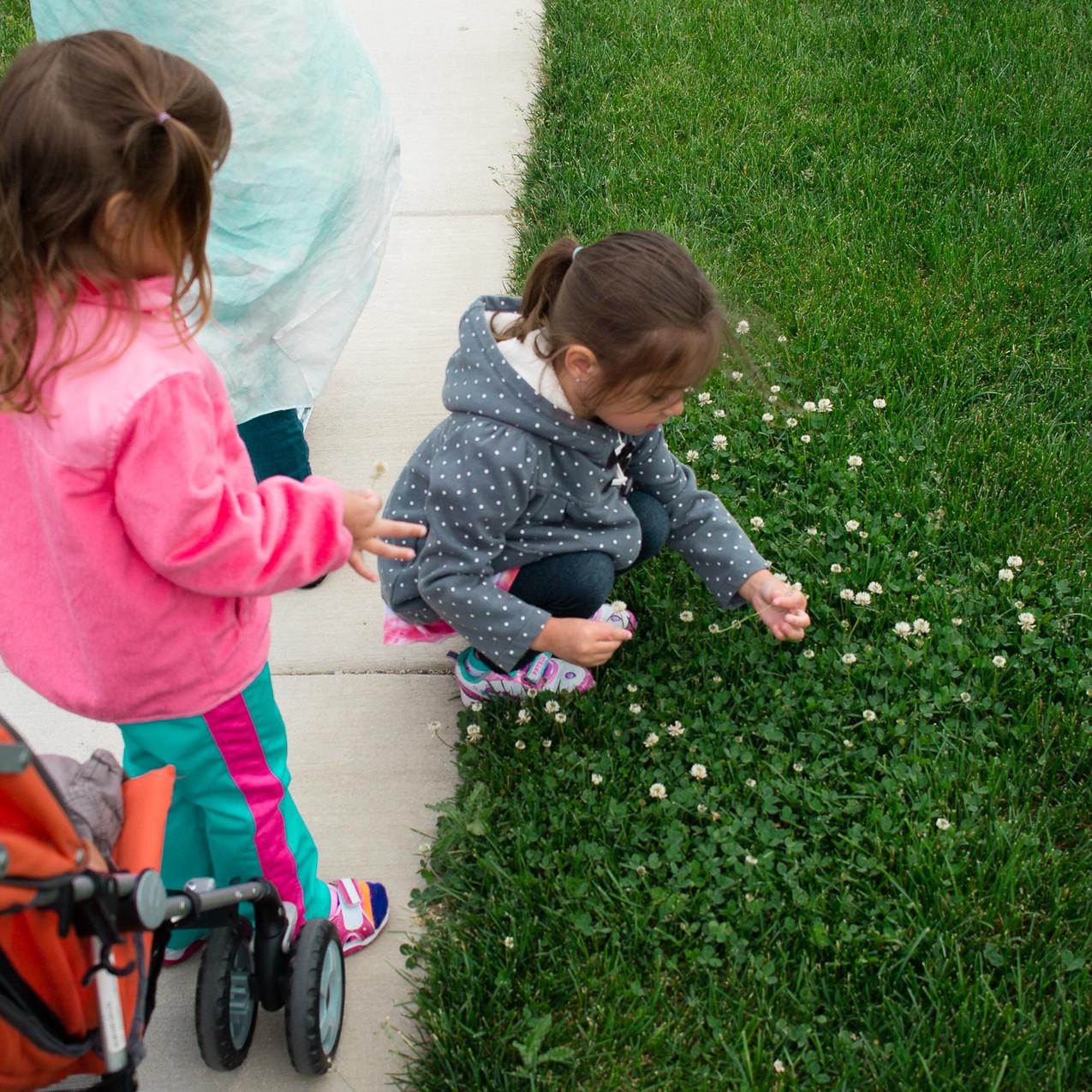 Flower Picking...
