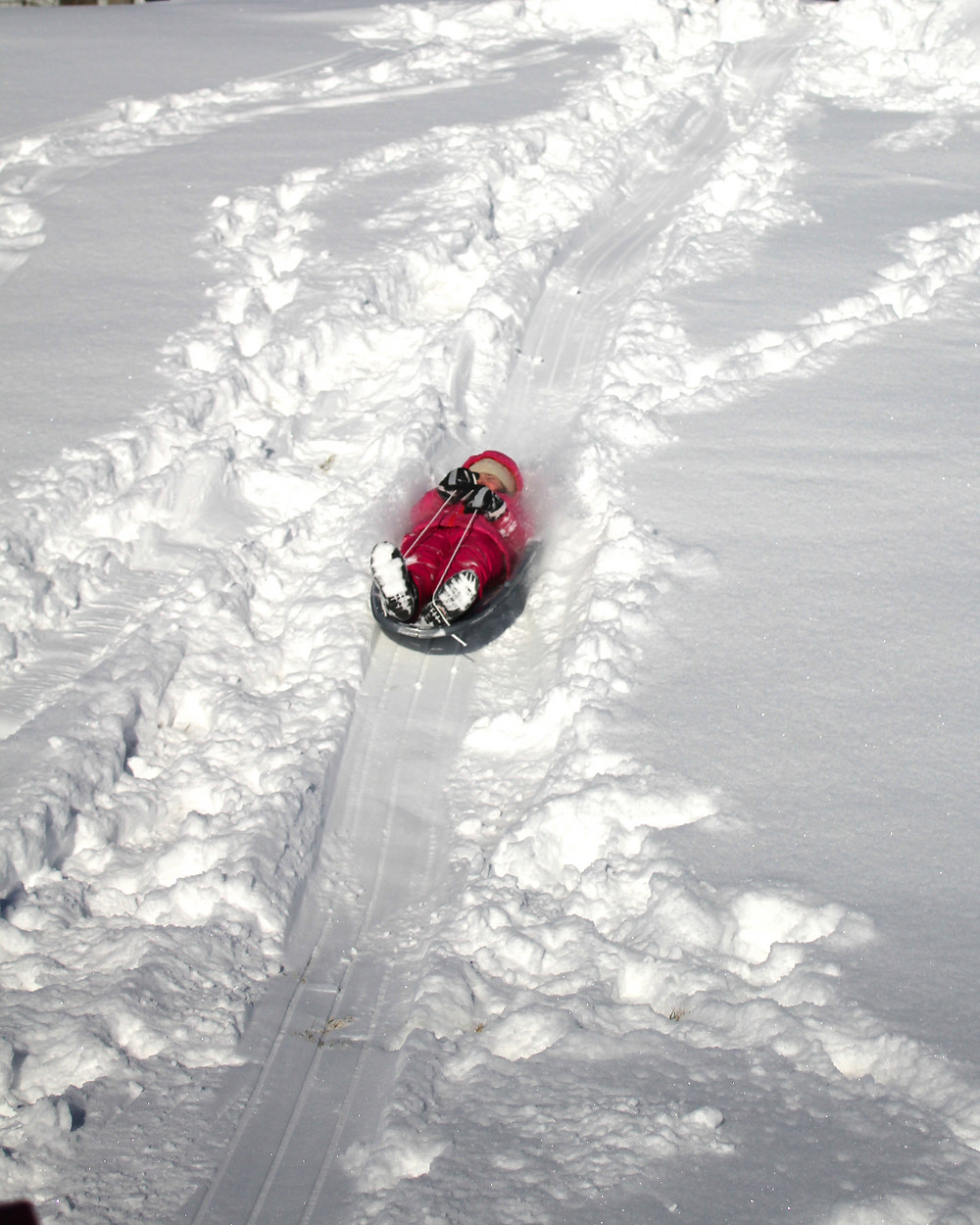 Blue Sky Daycare home daycare child zooming down a hill on a sled