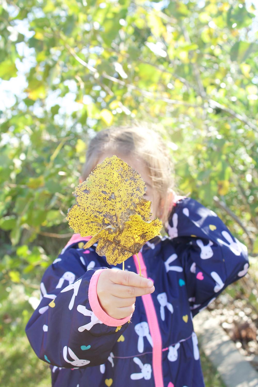 Blue Sky Daycare home daycare children enjoy a late summer nature walk