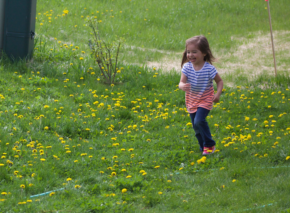 Chasing butterflies at Blue Sky Daycare home daycare