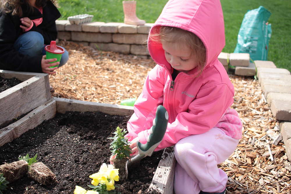 A child helps plant flowers in the Blue Sky Daycare flower garden.