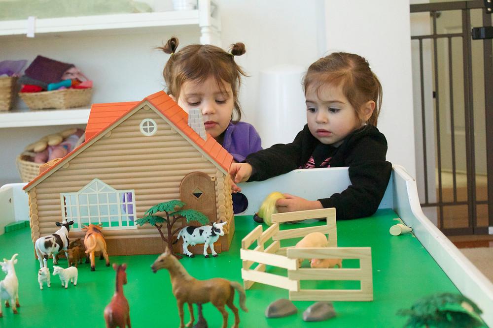 Blue Sky Daycare home daycare pretend play with farm animals