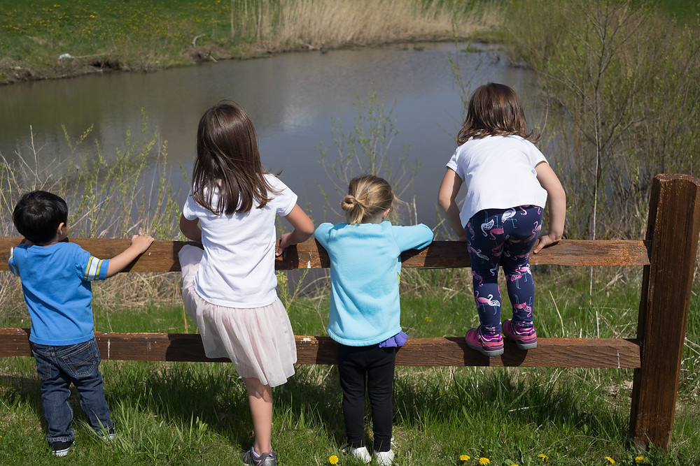The Blue Sky Daycare kids search for ducks in a nearby pond.