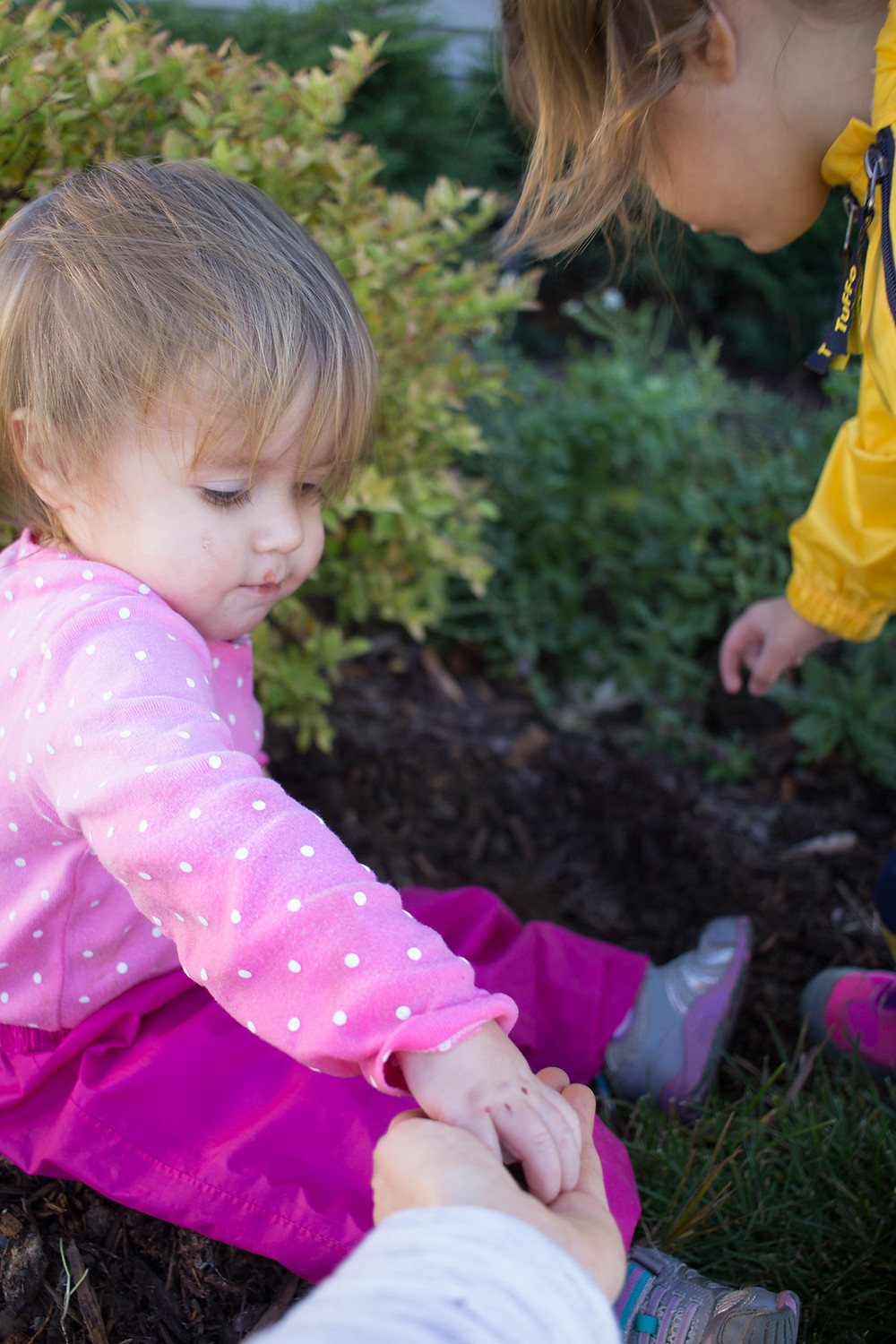Blue Sky Daycare children plant flower bulbs