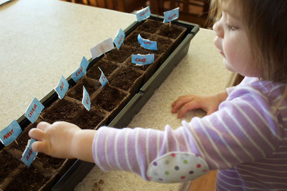 Blue Sky Daycare child planting seeds for the garden