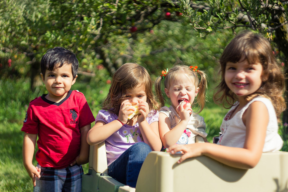 Blue Sky Daycare families explore a local apple orchard