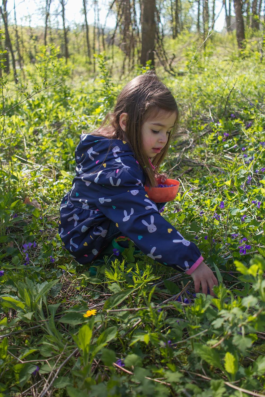 A Blue Sky Daycare child picks violets
