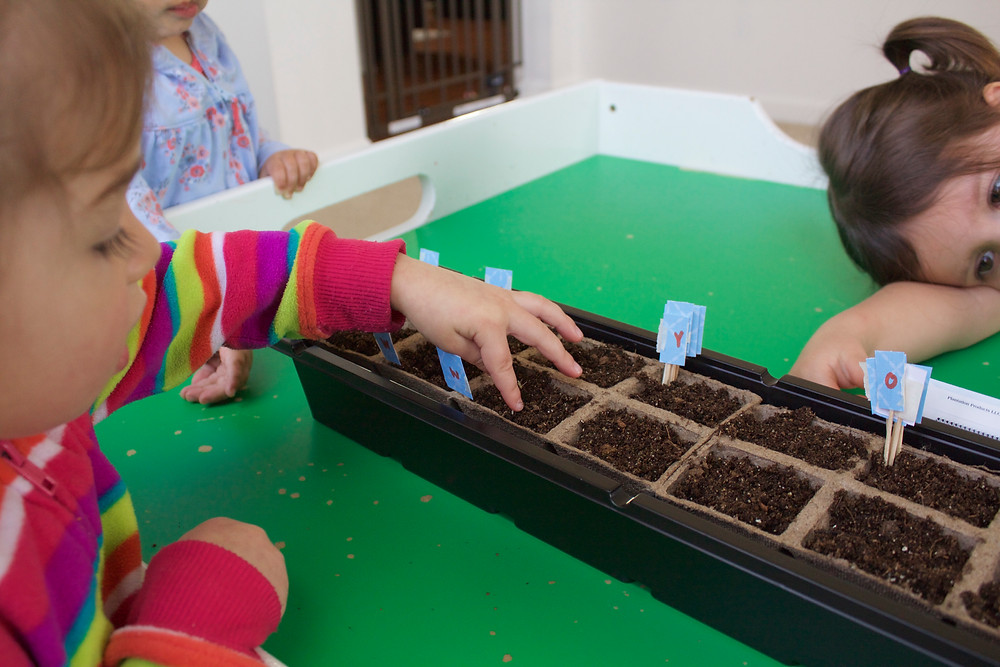 Planting marigolds with the Blue Sky Daycare home daycare kids