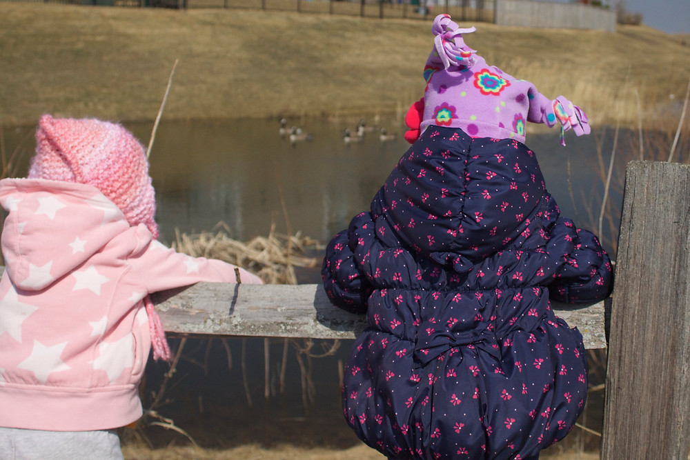 Blue Sky Daycare children watch geese on a nature walk