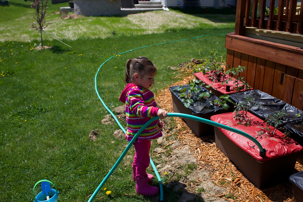 Children help with gardening at Blue Sky Daycare home daycare