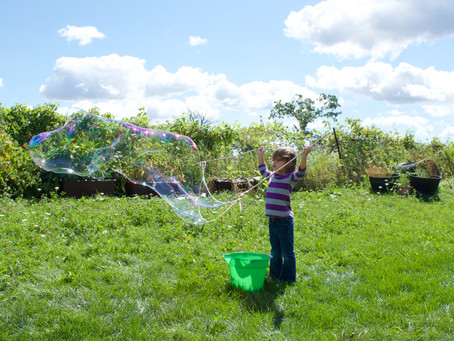 Giant Bubbles, Cupcakes, and Sunflowers
