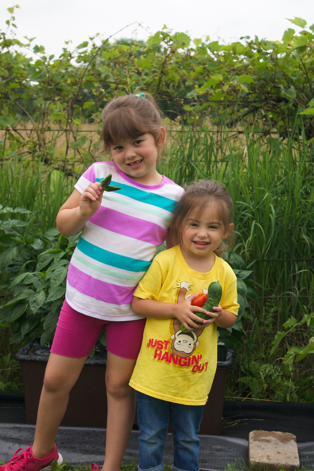 Having fun picking vegetables at Blue Sky Daycare home daycare