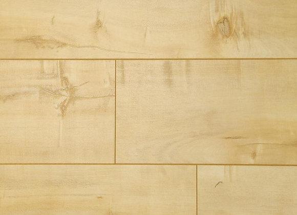 High Sierra - Gold Rush Maple