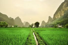 Chinees landschap.jpg