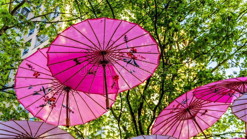 chinese paraplu 2.jpg