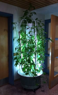 Tower Garden Memorial School