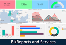 nav_bi-reports-and-services.png