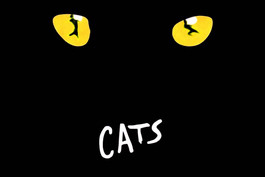 Rye Reviews: CATS The Broadway Revival
