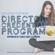 Texas Director Credential Online Course