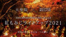 【お知らせ】宮島・大聖院×東京カメラ部紅もみじライトアップ2021イベント開催