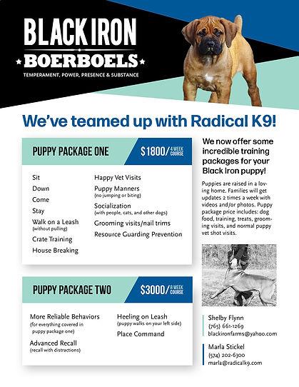 Black Iron Boerboels Training package sm