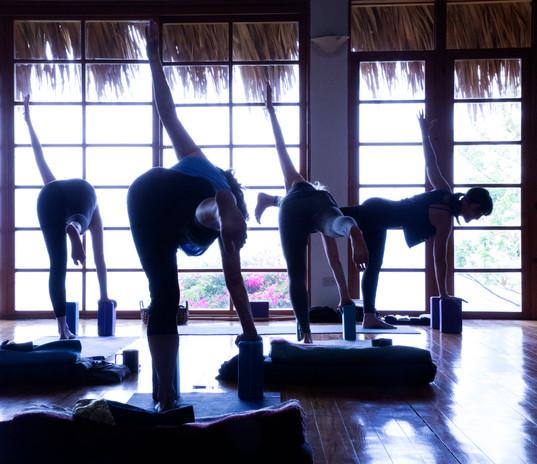 Yoga yoga yoga