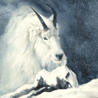 extinction___snow_goat_by_m2mazzara.jpg