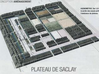 Plateau de Saclay : un jardin provisoire sert de prototype au projet