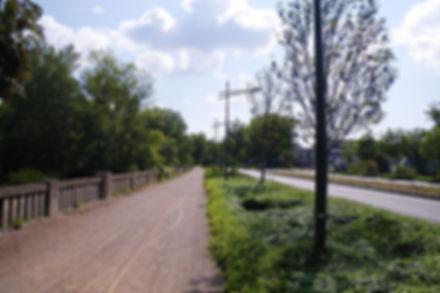Boulevard Bonnevay (69)