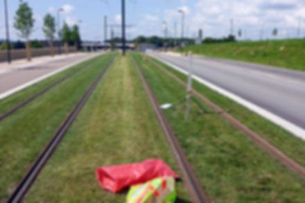 Voie verte du tramway (25)
