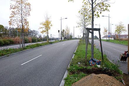 Route du Rhin (67)