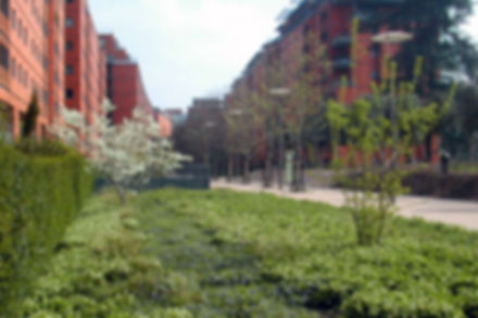 Aménagements paysagers de la Cité Internationale (69)