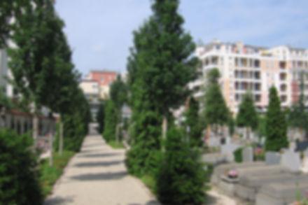 Requalification et aménagement paysager du cimetière des Fauvelles (92)