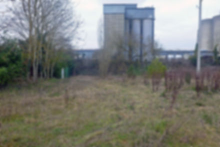 Projet d'aménagement du Parc de Limours (91)