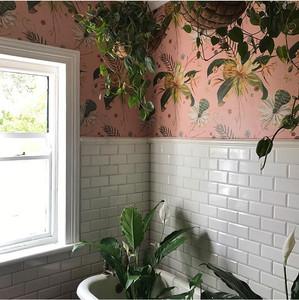 Pink Botanical Wallpaper