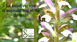 "Conférence ""Biodiversité"""