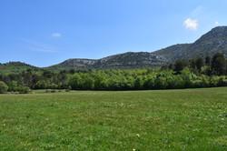 Plaine de Pichauris
