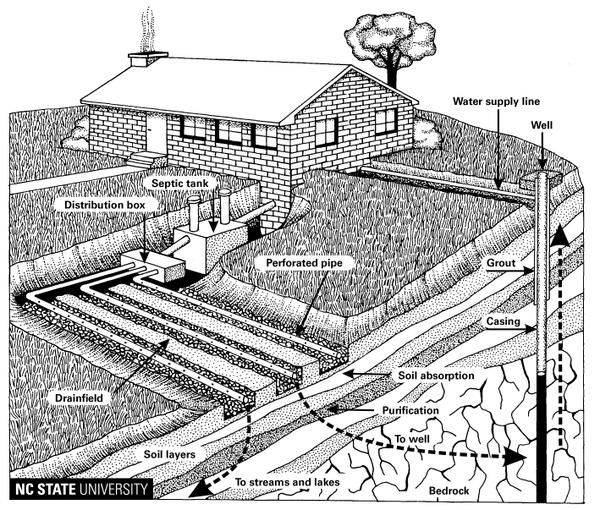Wastewater Treatment and Disposal in the Soil