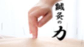 鍼灸の力.jpg
