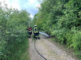 Feuer Unrat, Rehren, L434