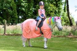 Fairytale Pony Parties